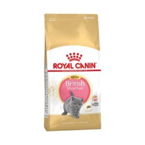 Royal Canin Kitten British Shorthair